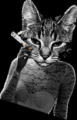 Gatinha fumando.png