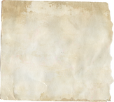 TEXTURE 1.png