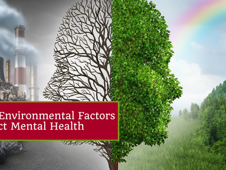 How Environmental Factors Impact Mental Health