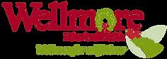Wellmore Festival of Lights Logo Transp.png