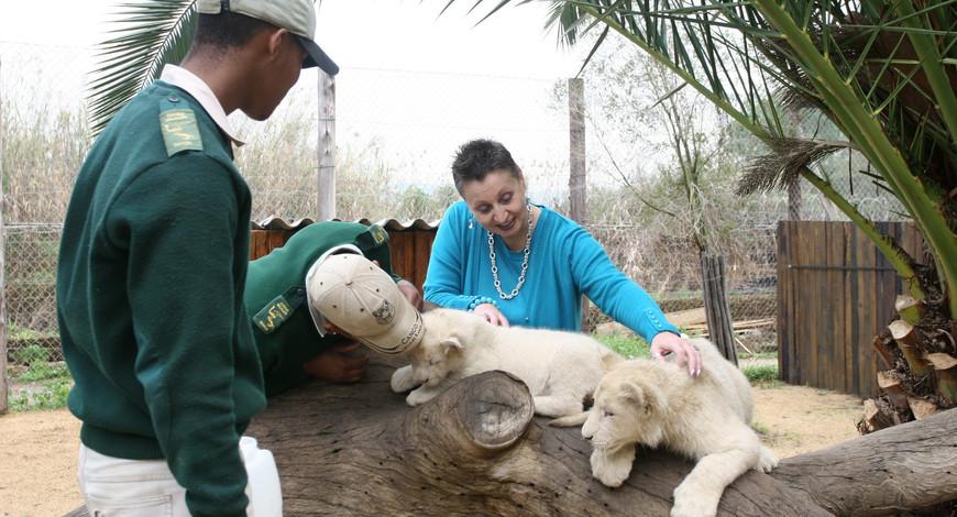 White Lions Cango Wildlife Ranch 5_06c.j