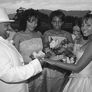 Various Wedding