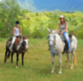 Kauai Concierge Horseback Riding