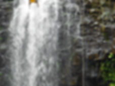 Kauai Concierge Waterfall Rappel
