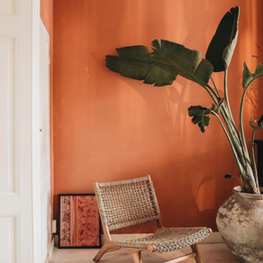 You Would Probably Like to Hit the Wall with These Accent Designs in Your Home!