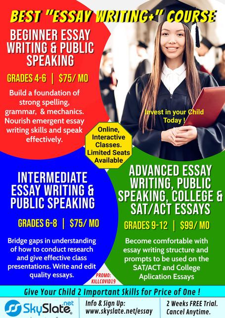 SS Essay Writing +- v1-min.jpg