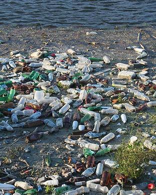 bottles-87342_1920.jpg