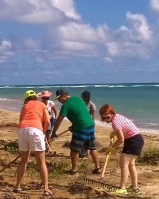 beach-cleanp-min.jpg