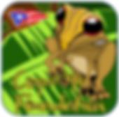 Coqui_1_new.png