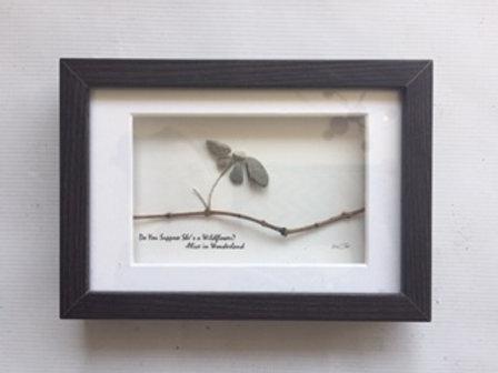 Pebble Art Wildflower 4x6