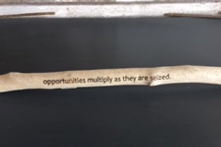 Opportunities multiply as they are seized
