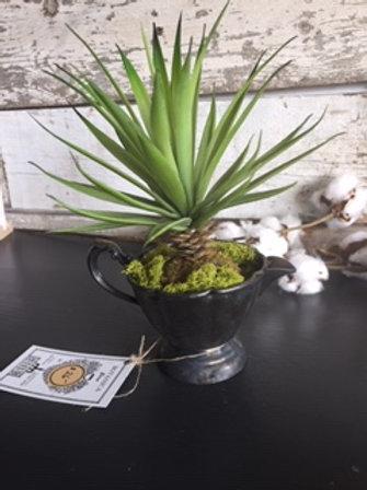 Antique Creamer with Succulent