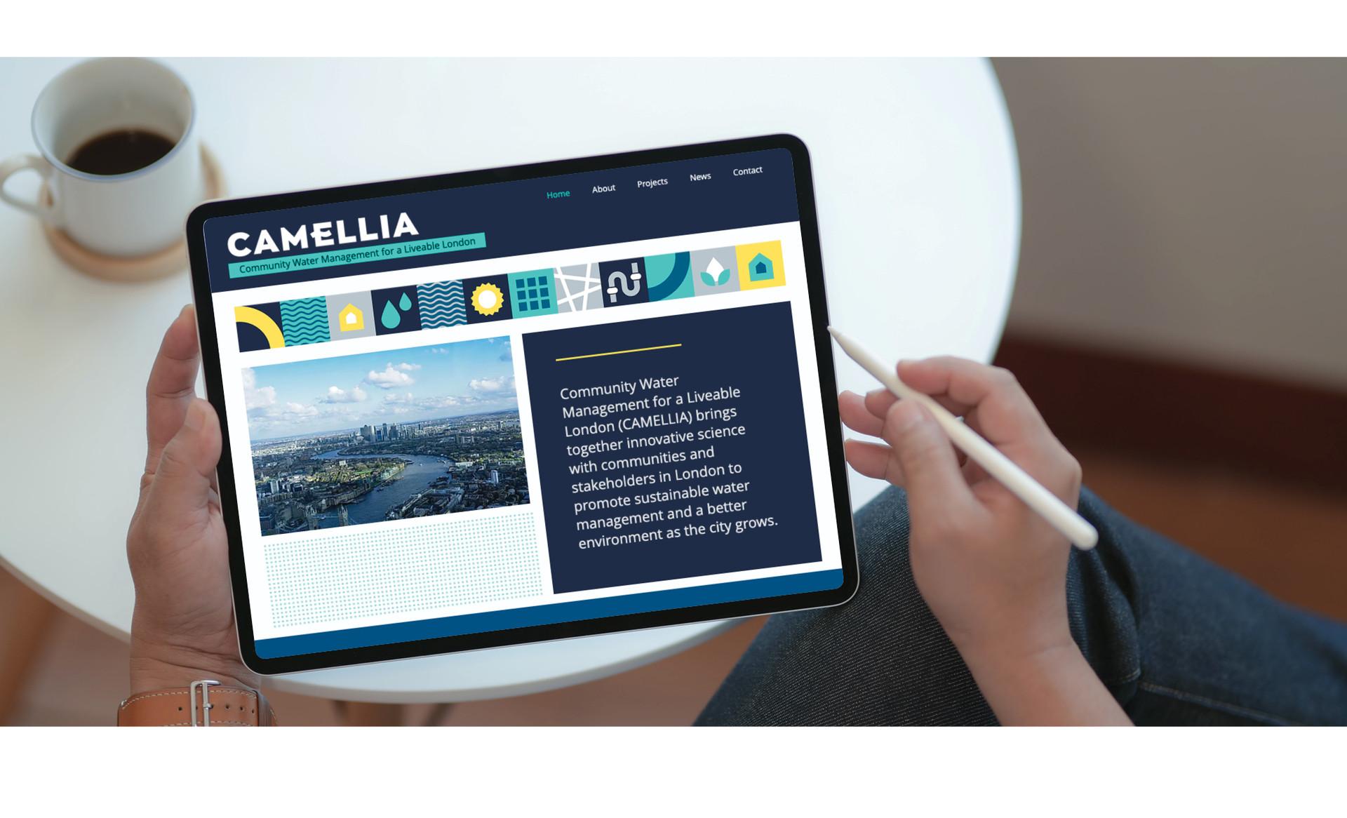 Camellia10.jpg