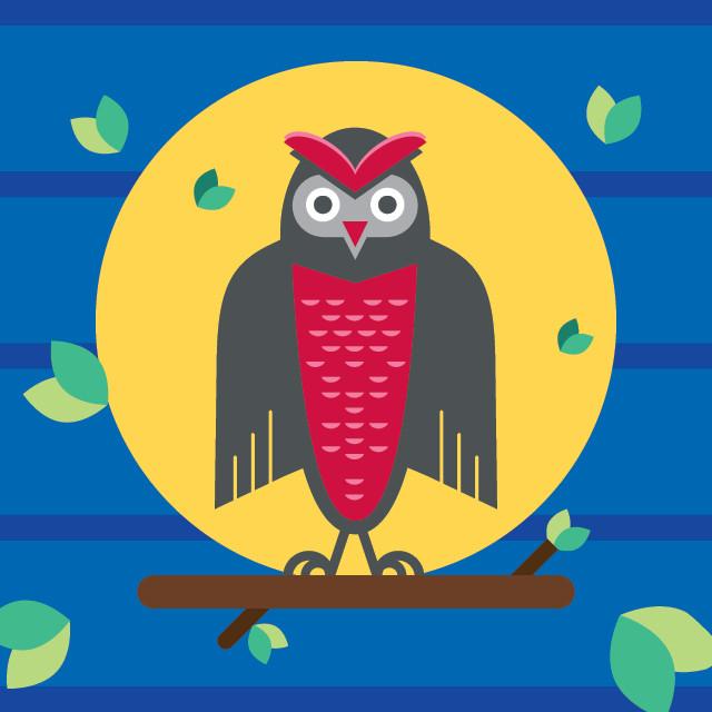 Owl_Examples.jpg