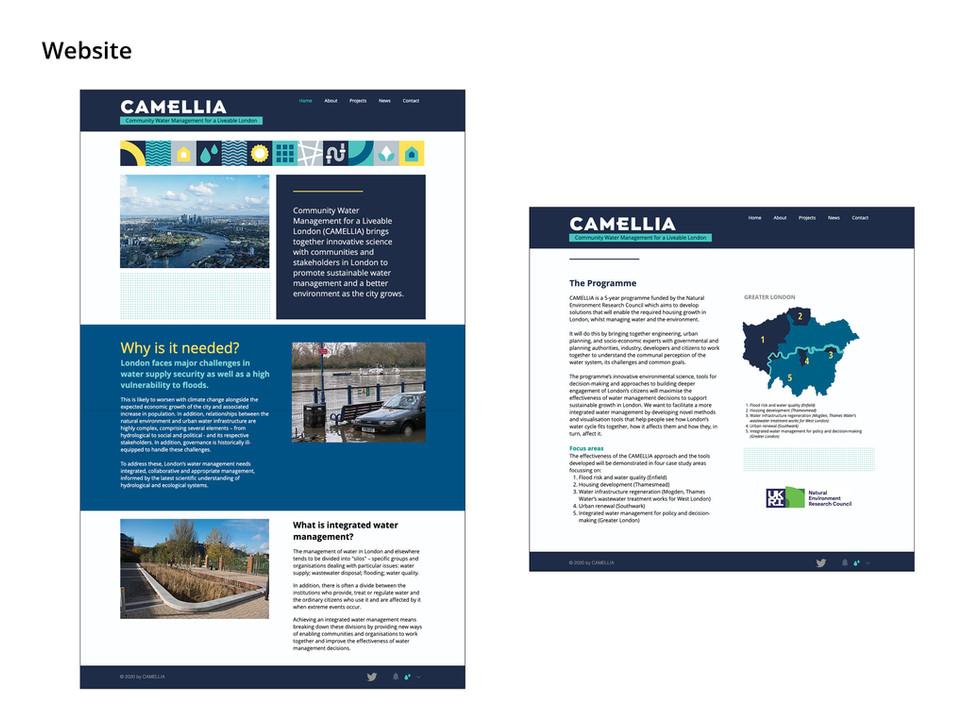 Camellia8.jpg