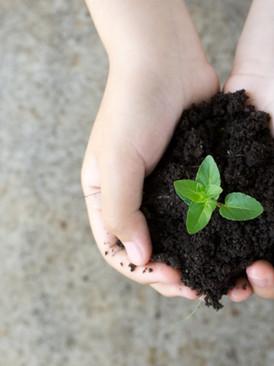 UPSC PRE 2020 Environment Answer Keys - Explanation