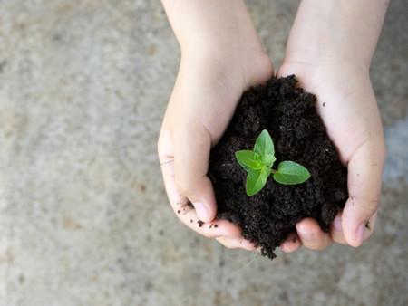 50 gestes pour préserver la planète