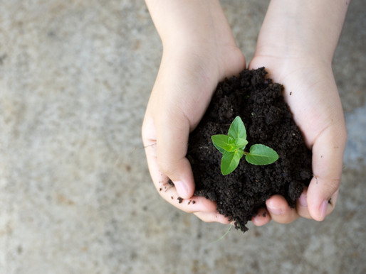 Teach Your Teens: Passing Environmental Responsibility to Our Children