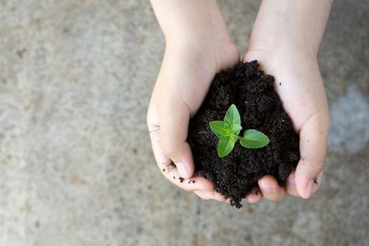Symbolbild Umweltschule