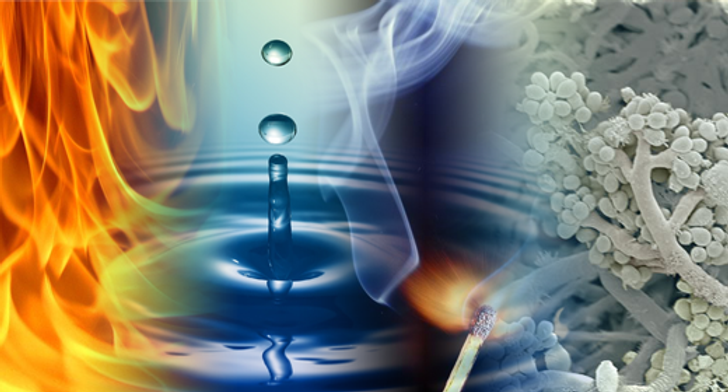 water_Fire_Mold cover photo.png
