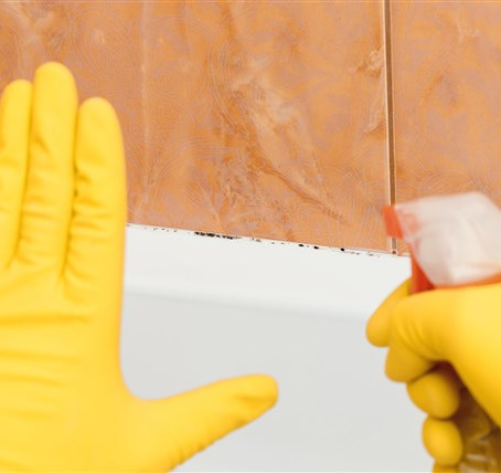 How To Remove Musty Mildew Smells