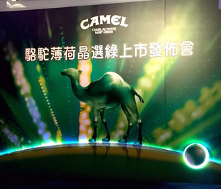 Camel Activate Mint Green Trade Dinner