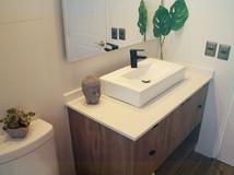 Remodelación baño hamlet