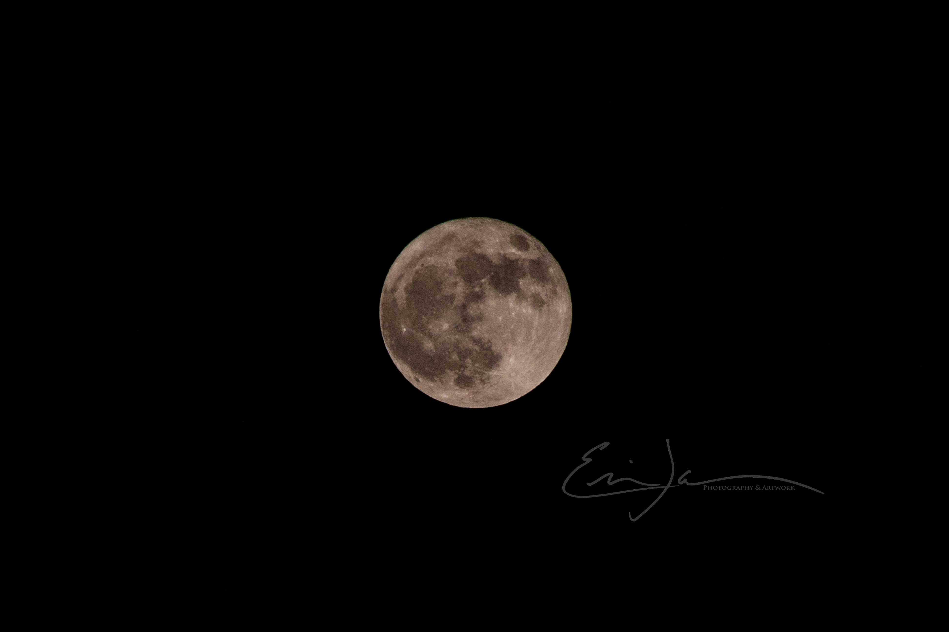 Halloween Full Moon 2020
