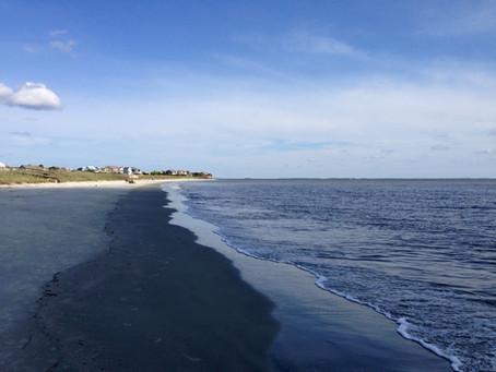 Island of Sea Turtles - Harbour Island, Beaufort, South Carolina, USA