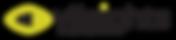 viisights logo new.png