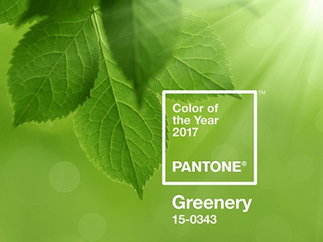 WELCOME GREENERY - THE 2017 COLOR