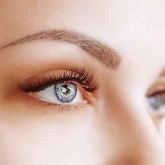 Delphine Eyebrow - Microblading Shading