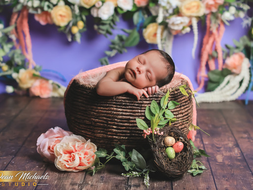 NEWBORN SESSION | BABY CHARLIE-NOVA