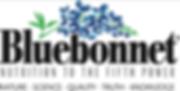 bluebonnet logo 2.png