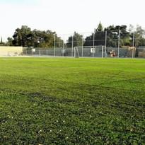 Cancha de futbol soccer  Pasto  Sintético híbrido