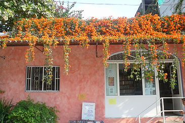 Entrance to Book Store & Coffee Shop on Calle Morelos Bucerias Nayarit