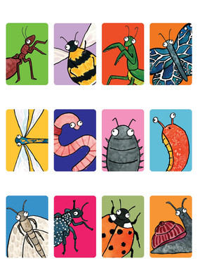 Match the Minibeasts Cards