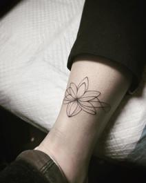 sam_geo_lotus.jpg