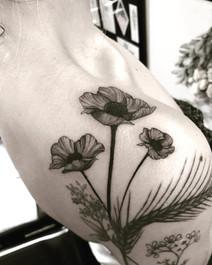 sam-poppies-2.jpg
