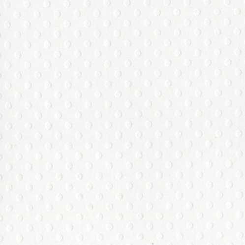 "Bazzill Swiss Dot Cardstock in Salt 12""x12"" Cardstock"