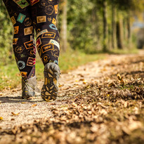 yellow-leaf-trail.jpg