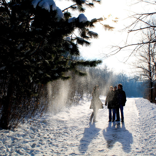 walking-with-the-kids-on-the-newberry-tr