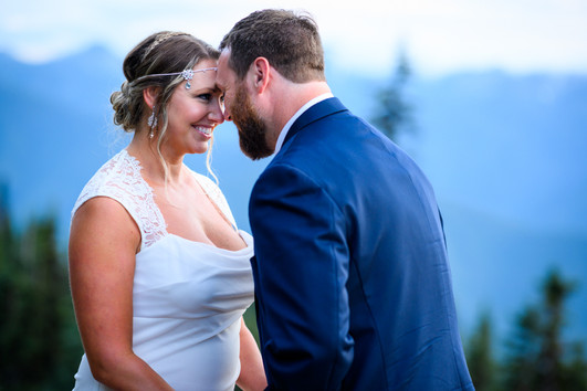 Hurricane Ridge Olympic Mountains Elopement, WA