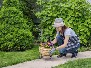 5 tips para optimizar al máximo un patio pequeño.