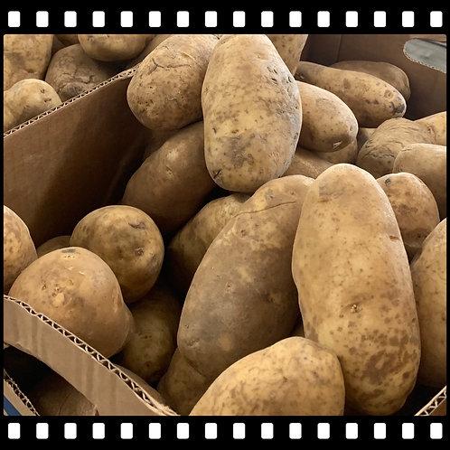 Potato (Large Baker)