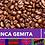 Thumbnail: Finca Gemita Coffee / 12oz