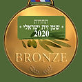 Israeli Bronze.jpg