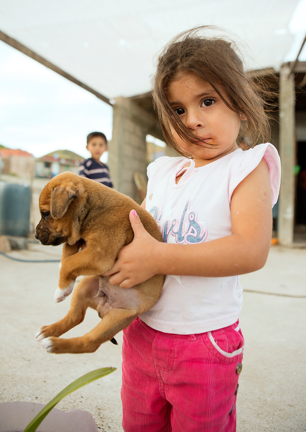Local little girl with puppy Mexico