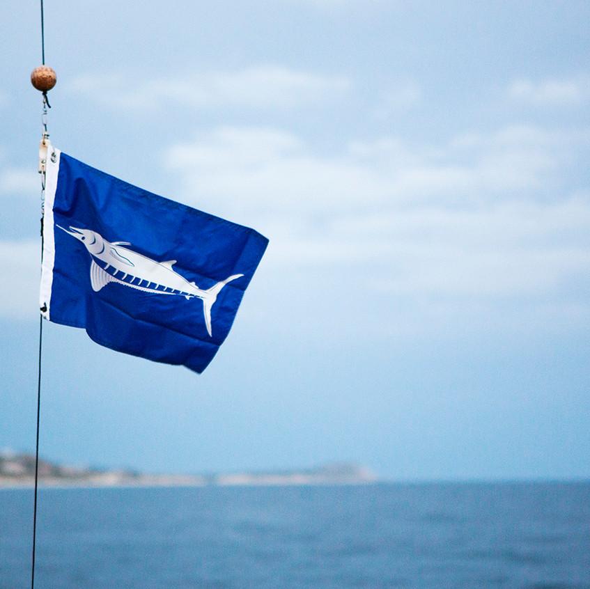 marlin flag copy