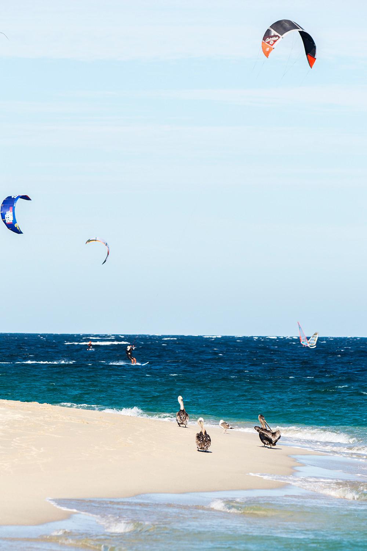East Cape Baja Windsurfing